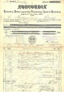 Pojistka 1895